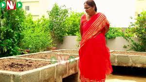 How To Start A Garden Bed Terrace Gardening How To Start A Raised Bed Garden Padmaja