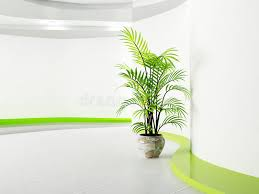plante verte dans une chambre plante verte dans la chambre illustration stock illustration du