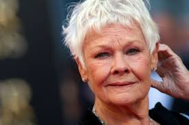 judi dench hairstyle front and back of head judi dench proves she s the next great hellraiser at the age of 81