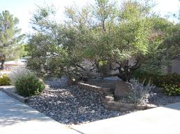 native plants extension master gardener xeriscape u2013 it u0027s not just for the desert anymore extension
