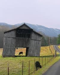 Cliff Barn 164 Best Big Green Barn Images On Pinterest Country Life