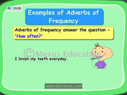 learn english grammar adverbs of frequency youtube