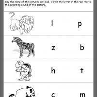 1082 best preschool printables images on pinterest preschool