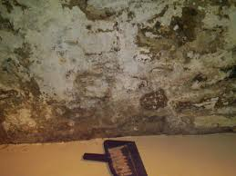 cool patching basement walls home design new interior amazing