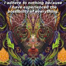 Psychedelic Meme - full frontal fractal feline meme by phyteclub on deviantart