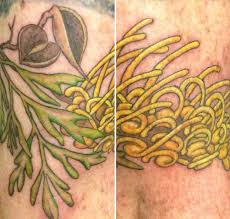 australian native plant botanical tattoos