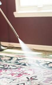 Area Rug Cleaning Service Rug Cleaning Indianapolis Premier Steam Cleaning