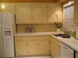 Kitchen Cabinets Restaining Kitchen Prefab Kitchen Cabinets Within Flawless Premade Kitchen