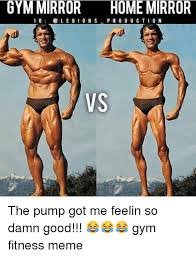 Fitness Meme - gym mirror home mirror i g l e g i o n s production vs the pump got