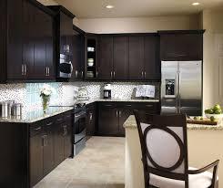 Kitchen Cabinet Door Colors Aristokraft Maple Sarparilla Cabinet Door Style Affordable