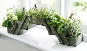 shabby chic foldable herb planter kit with seeds grow your own