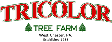cut your own christmas tree directions tricolor tree farm