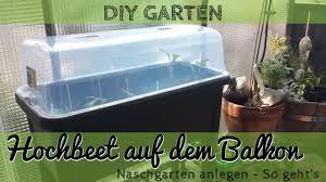 hochbeet balkon hochbeet anlegen auf dem balkon gardening