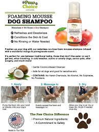 amazon com dry dog shampoo waterless no rinse foam mousse