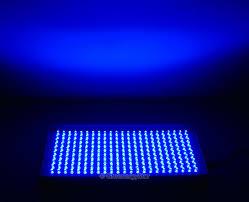 blue led lights interiors design
