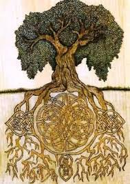 391 best trees talking trees roots images on roots