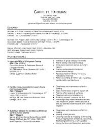 Canadian Style Resume Template Best Resume Formats 47 Free Samples Examples Format Free Smart