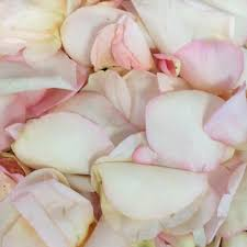 petals for sale flash sale at fiftyflowers fiftyflowers the