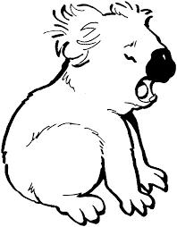 28 koalas coloring pages free printable koala coloring pages
