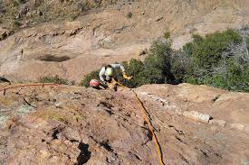 dog rescued from cliff near bisbee local news tucson com