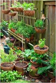 backyards chic vegetable garden design plans philippines
