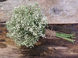 baby s breath bouquet simple dried baby s breath bouquet small wedding