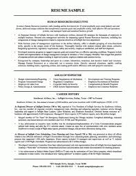 the most incredible exles of hr resumes resume format web sles of resume for students 28 images entry level resume