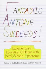 fantastic antone succeeds experiences in educating children with