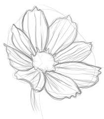 1409 best doodling images on pinterest draw drawings and flower