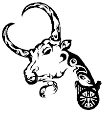 tribal taurus bull with nose ring tattoo design in 2017 real