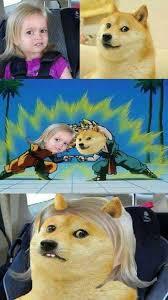 Doge Girl Meme - could you not girl doge dbz fusion meme