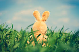 bunny easter easter traditions 9 myths and legends and the stories them