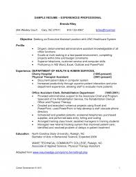 Sample Resume Professional by Resume Example For It Professional