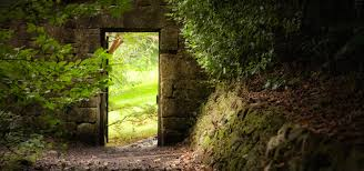 secret garden a guided meditation for clarity u0026 calm meditainment
