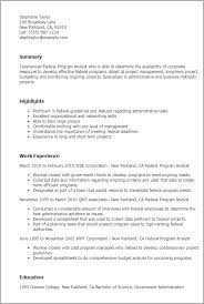 Objective In Resume Example by Professional Federal Program Analyst Templates To Showcase Your