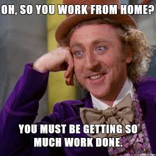 Working From Home Meme - orgwide 5 genius work from home tips for getting the job done
