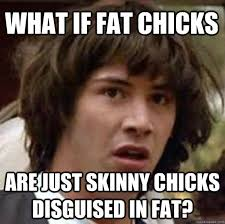 what if fat chicks are just skinny chicks disguised in fat