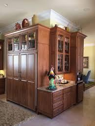 Miele Kitchen Cabinets Lovely Miele All Refrigerator Orbitaloc
