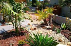 Ideas For Backyard Landscaping On A Budget Desert Landscape Ideas For Backyards Backyard Desert Landscaping