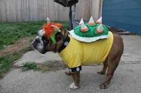 Bowser Halloween Costumes Geek Pooch 17 Spook Tastic Costume Duos