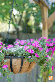 Hanging Plants For Patio 114 Best Hanging Basket Ideas At The Barn Nursery Tn Images On
