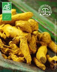 cuisiner le curcuma curcuma frais bio bienfaits recette achat propriétés anti cancer