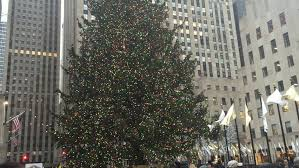 live rockefeller tree lighting new york city december 2014 tourists and pedestrians walk past