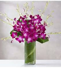Orchid Delivery Orchid Delivery Orchid Bouquets Sunnyvale Ca Florist