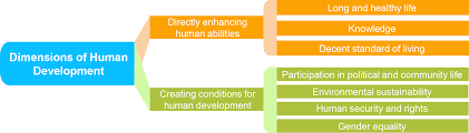 what is human development human development reports
