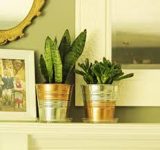 galvanized planter with copper u2013 craftbnb