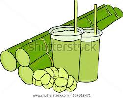 xmas sugar canes free vector download 1 699 free vector for
