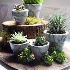 25 modern ideas for flower pots and planters interior design