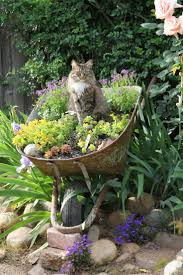 Beautiful Garden Images 1229 Best Cats In The Garden Images On Pinterest Animals Kitty
