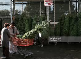tree sales at big box retailers increase photos and